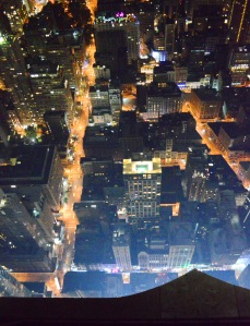 A view from the top of the Empire state Building.